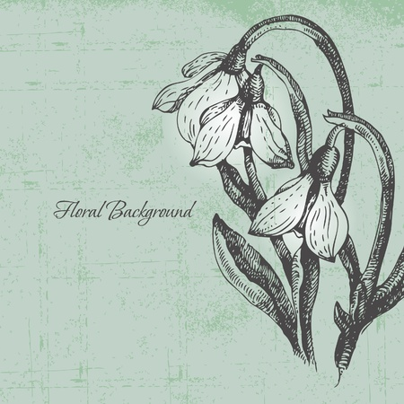 Floral background with snowdrop in retro style Vector