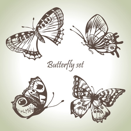 freehand drawing: Set of butterfly. Hand drawn illustrations Illustration