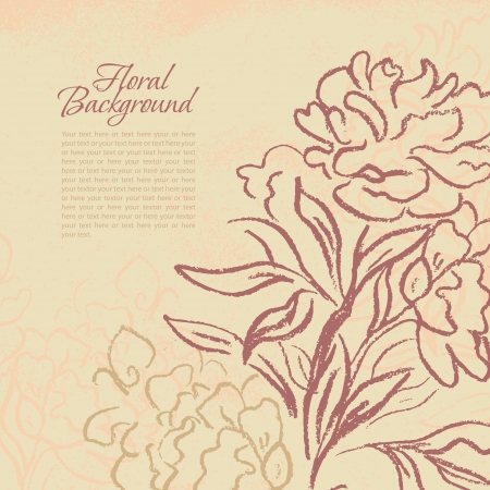 Beautiful peony vintage background. Hand drawn vector illustration.  Vector