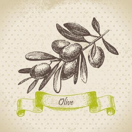 aceite de cocina: Mano de oliva dibujado
