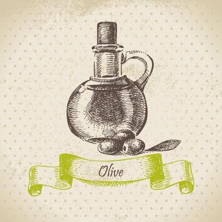 olive oil bottle: Olive oil  Hand drawn illustration