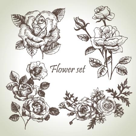 cenefas flores: Floral ilustraciones juego dibujados a mano de rosas