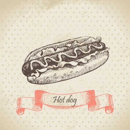 hot dog: Hot dog. Hand drawn illustration