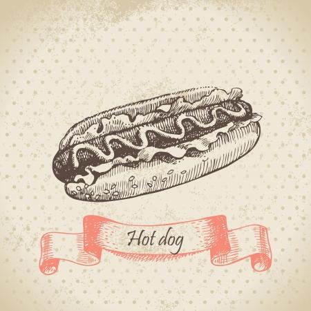 Hot dog. Hand drawn illustration