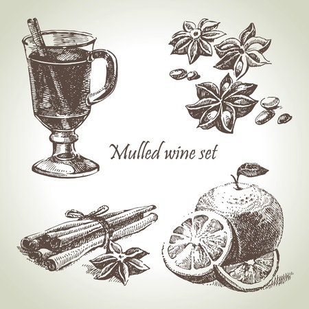 vin chaud: Set de vin, de fruits et d'épices chaud, illustrations dessinées à main