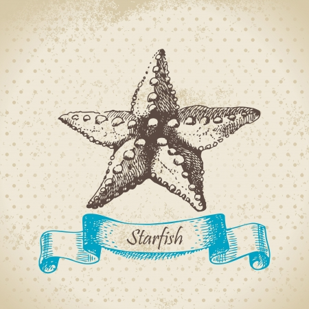 Starfish. Hand drawn illustration  Vector