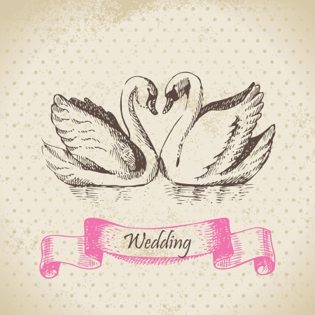 just married: Swans. Wedding hand drawn illustration  Illustration