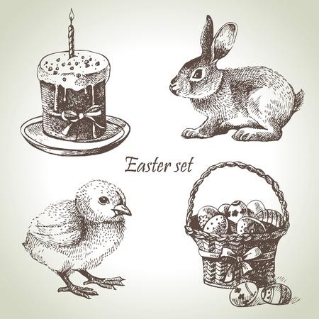easter chick: Easter set. Hand drawn illustrations