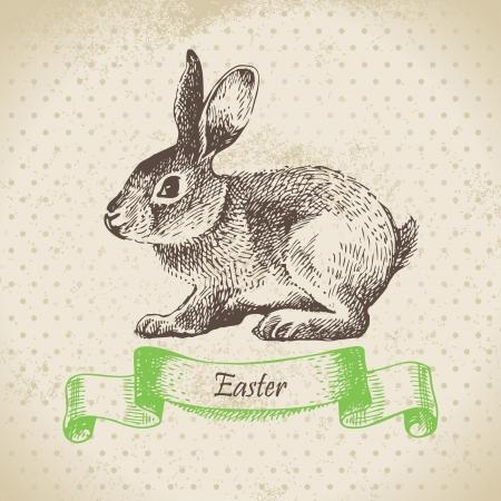 conejo: Fondo de la vendimia con el conejo de Pascua. Dibujado a mano ilustraci�n Vectores