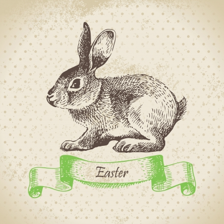 old fashioned menu: Vintage background with Easter rabbit. Hand drawn illustration