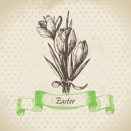 Vintage Easter background with crocus flowers. Hand drawn illustration  Stock Vector - 18002417