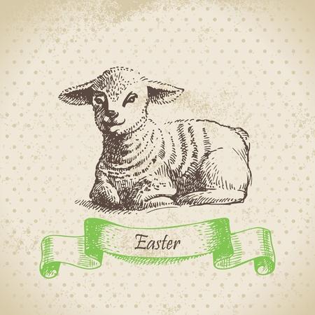 pasen schaap: Uitstekende Pasen achtergrond met lamsvlees. Hand getrokken illustratie Stock Illustratie