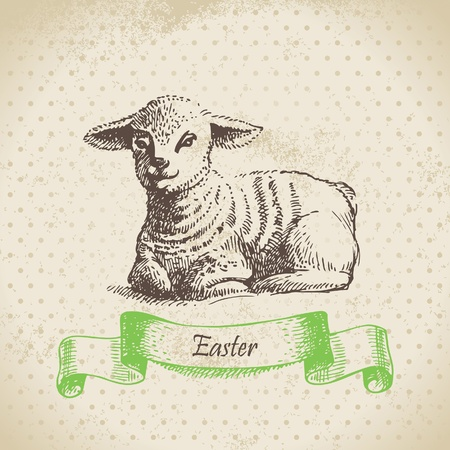 Vintage Easter background with lamb. Hand drawn illustration