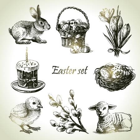 bunny rabbit: Easter set. Hand drawn illustrations