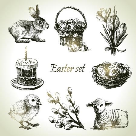 chick: Pascua establecido. Dibujado a mano ilustraciones