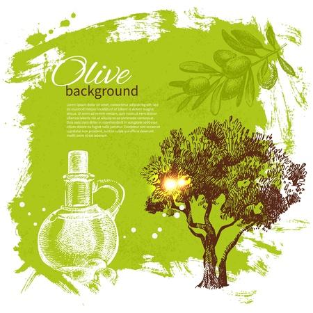 olivo arbol: Vintage fondo de oliva. Dibujado a mano ilustración