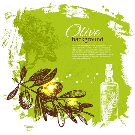 olivo arbol: Vintage fondo de oliva. Dibujado a mano ilustraci�n
