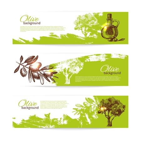 olivo arbol: Banner conjunto de antiguos orígenes de oliva fondo del chapoteo