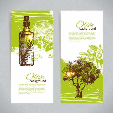 olive leaves: Banner set of vintage olive background splash backgrounds
