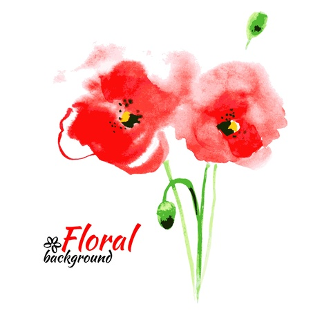 Beautiful watercolor paint red poppy. Vector illustration. Cards of Happy Mothers Day  Vector
