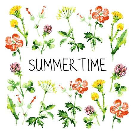 fleurs des champs: Carte de voeux r�tro fond floral vintage aquarelle avec des fleurs d'�t� fond de th�me Illustration