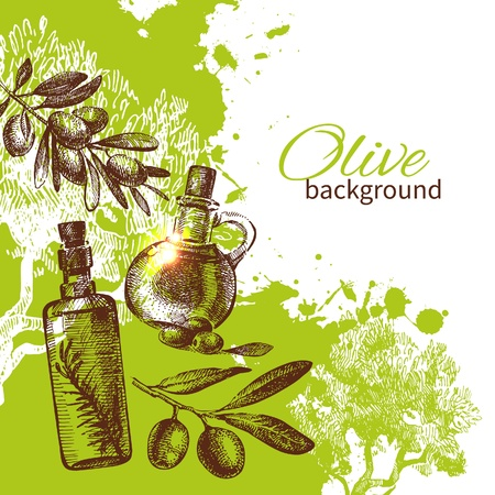 rama de olivo: Fondo verde oliva del vintage. D? la ilustraci?n exhausta
