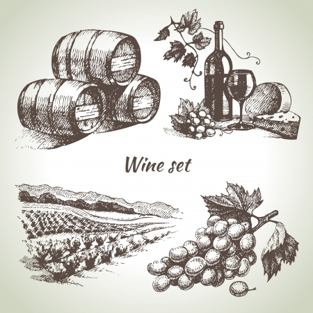 la vid: Dibujado a mano set vector vino