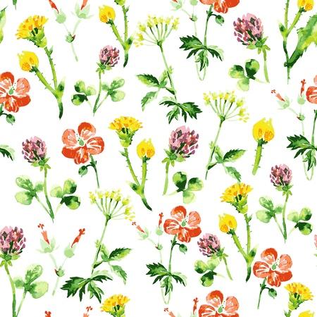 fleurs des champs: Aquarelle motif floral transparente. R�tro fond d'�t� avec des fleurs sauvages