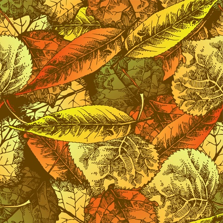 whirl: Seamless pattern with autumn leafs. Hand drawn illustration Illustration