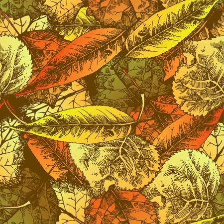 fallow: Seamless pattern with autumn leafs. Hand drawn illustration Illustration