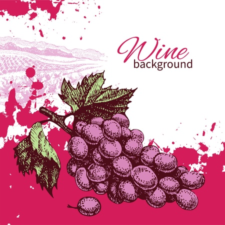 Wine vintage background. Hand drawn illustration Stock Vector - 21158231