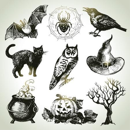 gato negro: Dibujado a mano conjunto de halloween