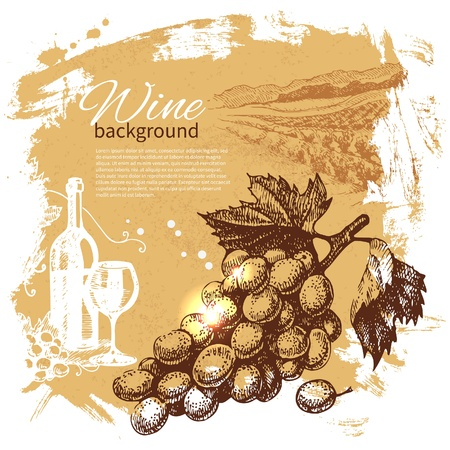 gourmet illustration: Wine vintage background. Hand drawn illustration. Splash blob retro design