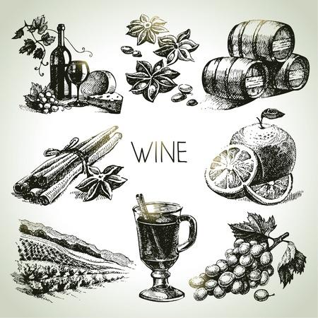 bouteille de vin: Main vin vecteur trac� ensemble Illustration