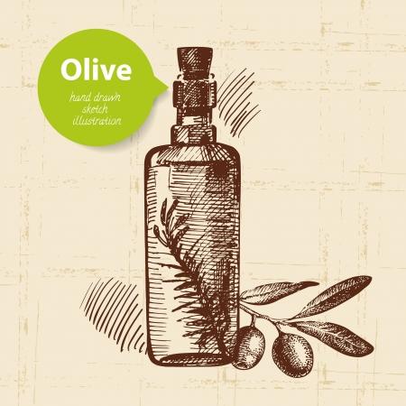 greece: Vintage olive background. Hand drawn illustration