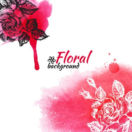 Floral watercolor background  Hand drawn rose illustrations Vector