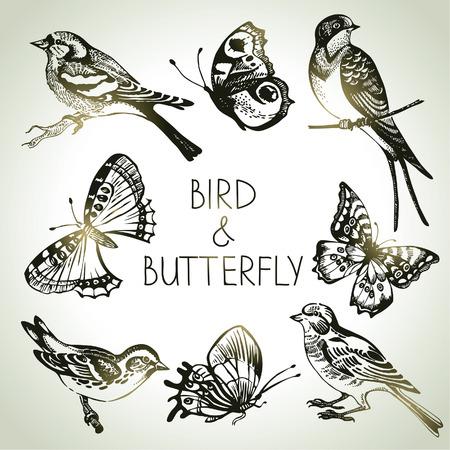 Oiseau et le jeu de papillon, illustrations dessinées à la main Vecteurs
