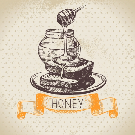 Honey background with hand drawn sketch illustration Vector