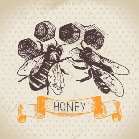 hives: Honey background with hand drawn sketch illustration