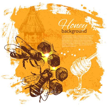 abejas panal: Miel dibujado a mano ilustraci�n boceto
