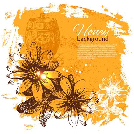 honeyed: Honey  hand drawn sketch illustration