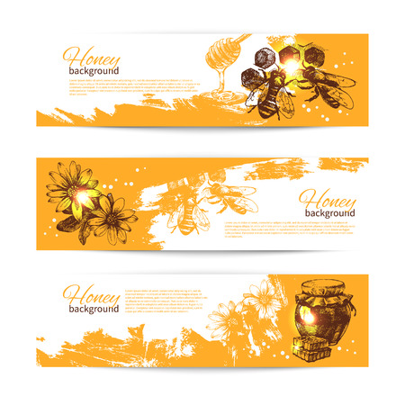 Set of honey banners with hand drawn sketch illustrations Ilustração