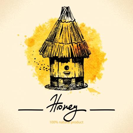 lindeboom: Honing met de hand getekende schets en aquarel illustratie