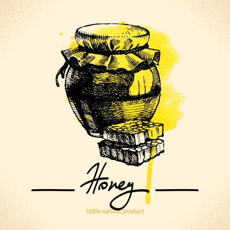 honeyed: Honey with hand drawn sketch and watercolor illustration