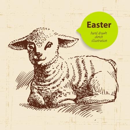 pasen schaap: Vintage Pasen achtergrond met de hand getekende schets illustratie en sticker