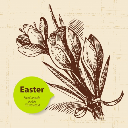 flower sketch: Vintage Easter background with hand drawn sketch illustration and sticker