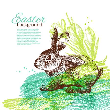 lapin silhouette: Fond de Pâques de cru avec la main illustrations croquis dessinés