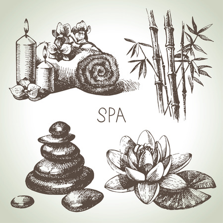 bamboo therapy: Spa sketch icon set. Beauty vintage hand drawn illustrations Illustration