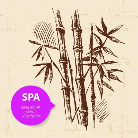 sauna: Spa background. Vintage hand drawn sketch illustration