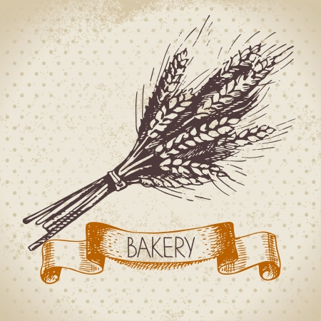 bakery products: Bakery sketch background. Vintage hand drawn illustration of wheat